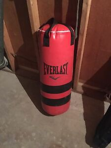 Brand new everlast punching bag