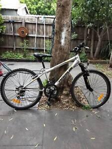 Radius Leopard Hybrid Bike