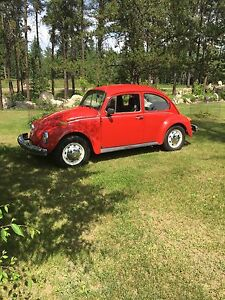 **MINT** 1974 volks wagon beetle