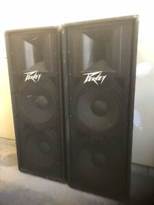Peavey 215 700W speakers