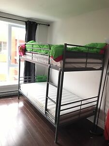 Furniture Bunk bed