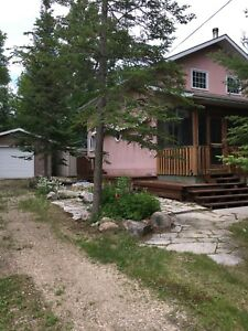 Gull Lake Cabin Rental
