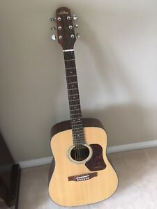 Walden Acoustic Guitar and Carrying Case
