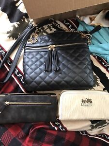 Coach wallet/ aldo purse and matching wallet