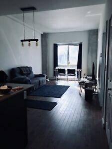 1 Bedroom condo(3 1/2), Downtown( Berri-UQAM) $1450
