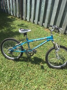 "Great Beginner Mountain Bike - 20"" kids 6 speed"