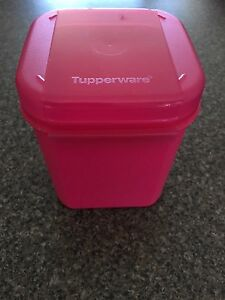 Tupperware container Dingley Village Kingston Area Preview