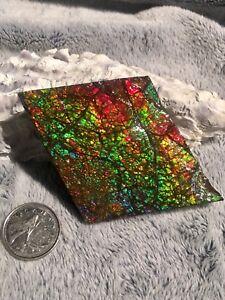 Ammolite gem pieces-3 different