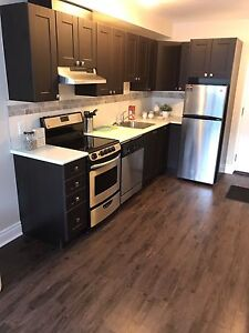Fully Renovated Pet Friendly Bachelor Close to Civic Hospital