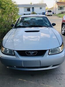 35th year Anniversarry Mustang A/T V6