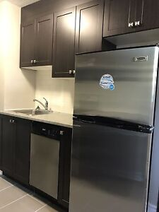 October 1st!! Fully Renovated Large 2 Bedroom in Britannia
