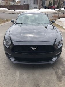 Mustang ecoboost 2015 all black