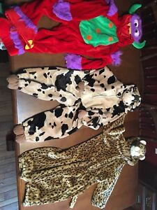 Costume size 3-4