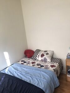 Female Roommate Wanted: Sublet