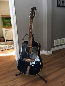 Ibanez 12 string acoustic