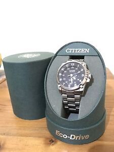 Titanium Citizen Eco-Drive Thebarton West Torrens Area Preview
