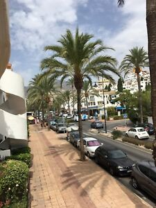 2 bedroom apartment Spain Malaga