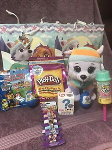 Paw Patrol Everest gift bag