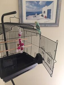 Brand NEW great bird cage - perfect 4 hand tame budgie, trolley extra