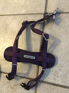 Dogness harness and leash