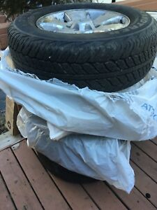 """Dunlop A20 tires with 17"""" wheels from Tacoma"""