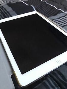 iPad Air 1 in Mint Condition (w/Case & Original Charger)