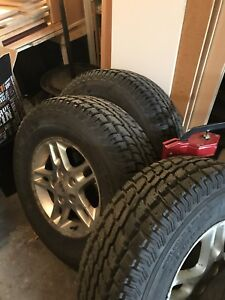 245/75r16 winter cat radial sst