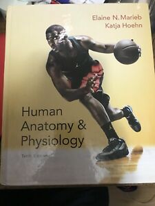 Human Anatomy & Physiology Bio Textbook 10th Ed