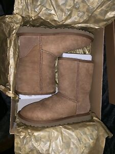 NEVER WORN AUTHENTIC SHORT CLASSIC UGG BOOTS! SIZE 6