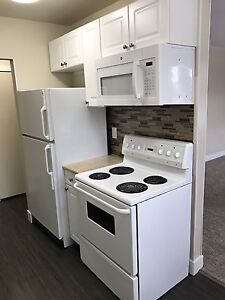Newly Renovated 2 Bed, 1 Bath Apartment with 4 Appliances