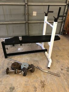 Northern Lights Adjustable Bench and Weights