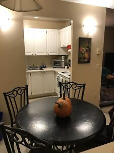 Roommate Needed for Sublet
