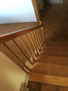 Stair railings / rampes d'escalier