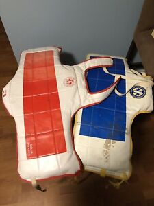 Taekwondo  training pads