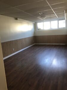 Bright Lower Level One Bedroom Apartment $1275/inclusive