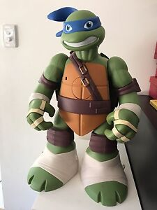 Ninja Turtle Play house Buderim Maroochydore Area Preview
