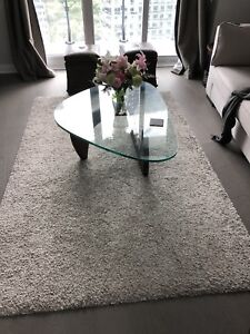 Used area rug in good condition