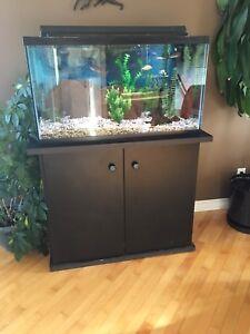 Aquarium 50 gallons