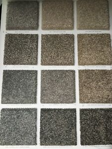 LUX LOOK CARPETS & INSTALLATION $3.05 SF ONLY!!!