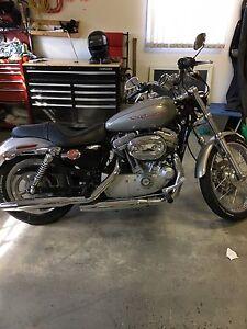 Harley Davidson Sportster Custom .Offers in person.