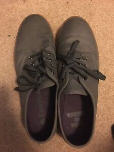 Never worn emerica shoes
