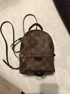 07341201584 Louis Vuitton Palm Springs backpack