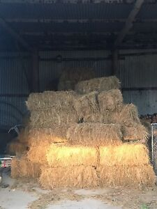 Square Hay Bales Meander Meander Valley Preview