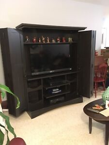 Large Wall Unit - TV Stand