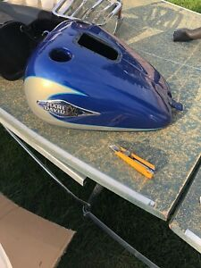 Fenders, Gas tank, and hard saddle bags