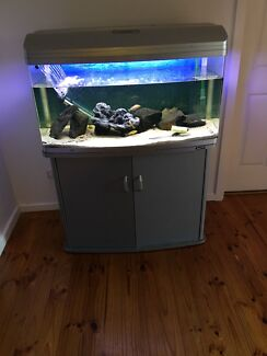 3ft Aqua One 980 tank and stand  $200