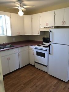 1 bedroom apartment for rent Jan 1, 2019
