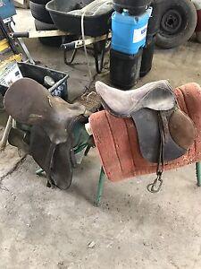 Saddles Eumundi Noosa Area Preview