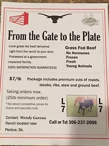 Grass Fed Local Beef