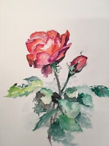 Beautiful watercolors